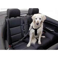 Varnostni pas za psa Car Dog XLarge