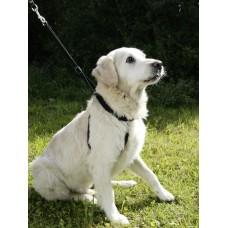 Oprsnica za psa MAXI LEADER
