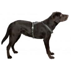 Svetleča oprsnica za psa XENOS