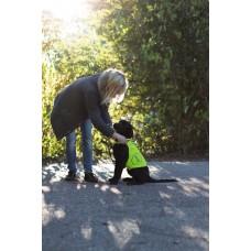 Svetleči jopič za psa SAFETY VEST