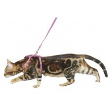 Mačja oprsnica in povodec PINKY ZEBRA